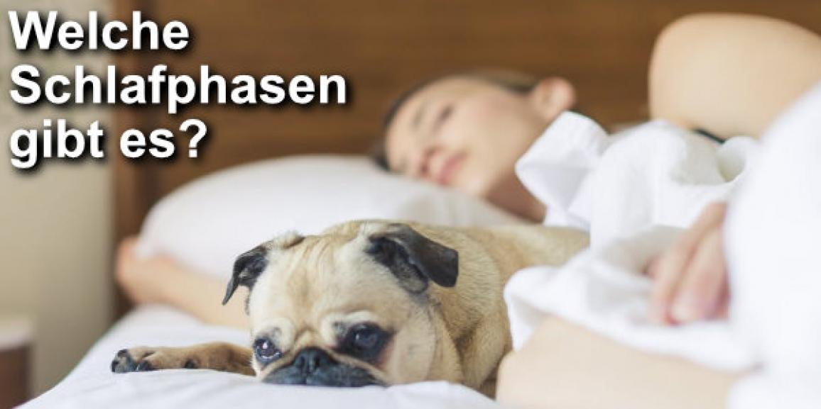 Überblick: Welche Schlafphasen gibt es?
